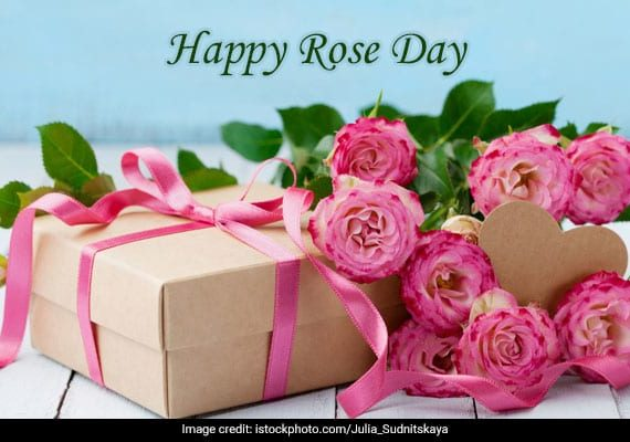 Happy Rose Day Quotes || Happy Rose Day Whatsapp Status || Happy Rose Day 2021 wishes and quotes
