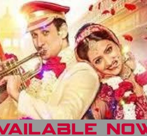 Babloo Bachelor Full Movie download Filmyzilla in Hindi, Review, Cast & Release Date
